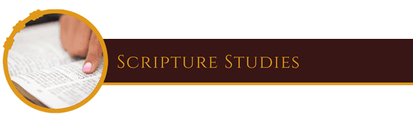 Scripture Studies